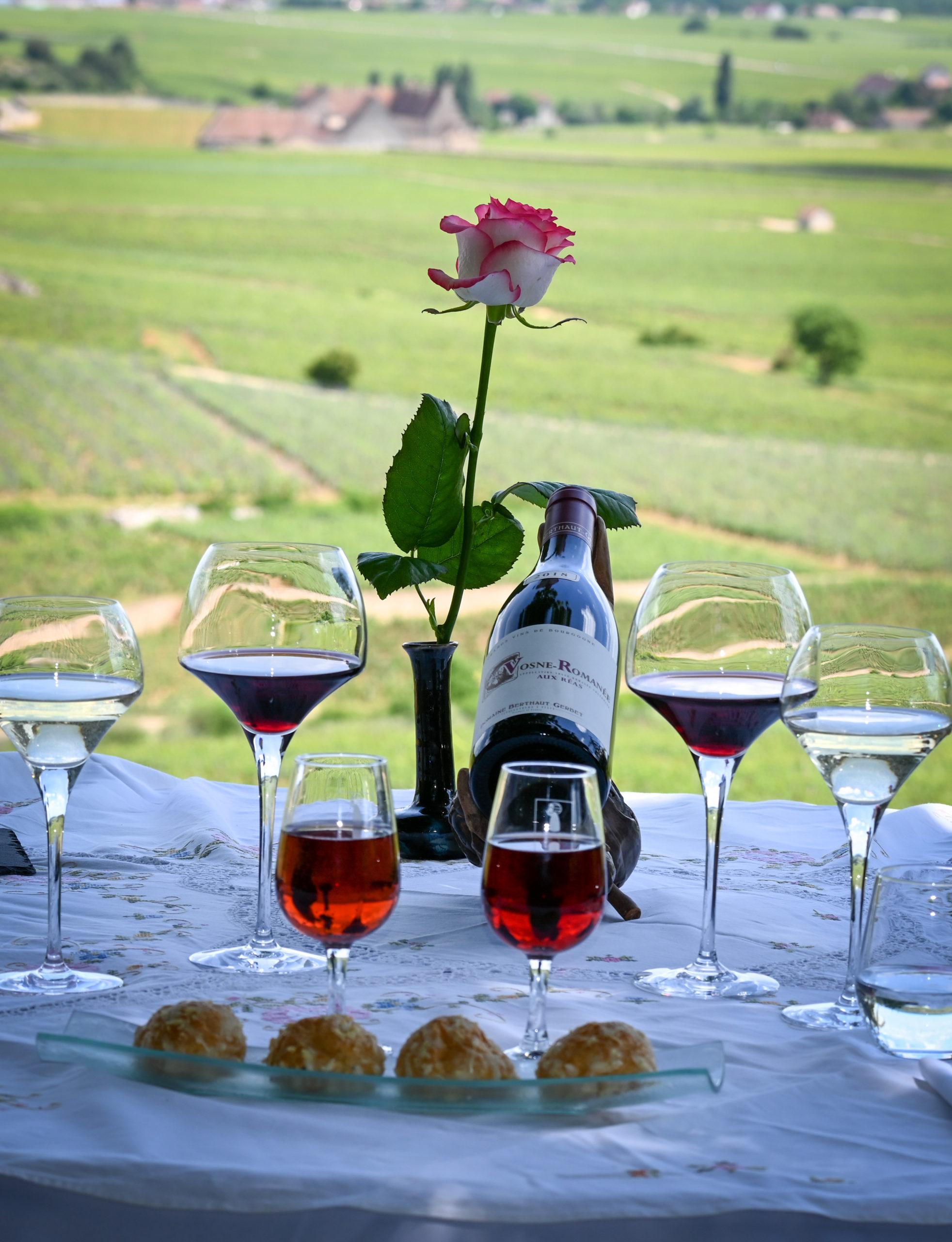 Repas dans les vignes